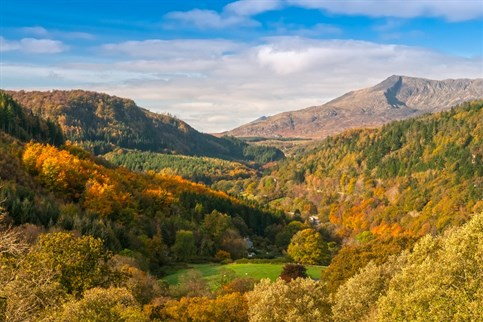 Autumn in Snowdonia near Betws y Coed